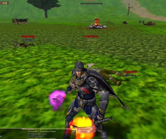Yourko Rogue 65 Level itemli NPli Char